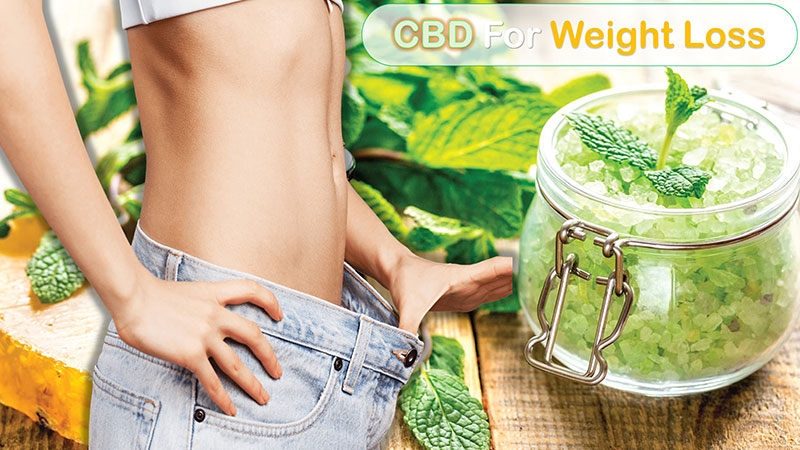 cbd for weightloss